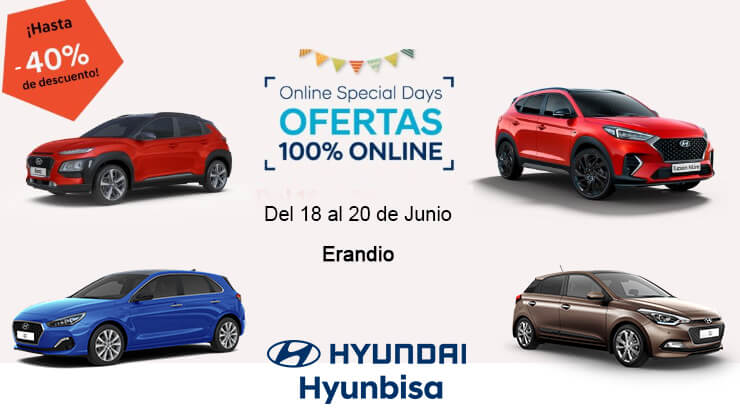 Hyundai Hyunbisa Special Days